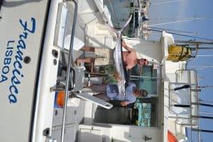 Fishing boat trips