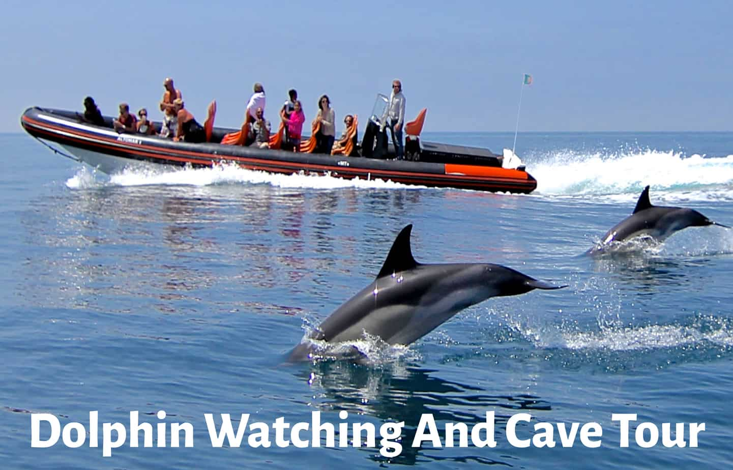 Dolphin Watching and Cave Tour-01