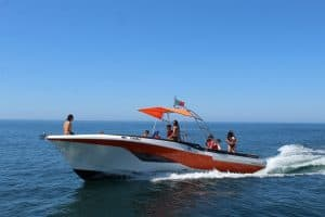 Luxurious Private Speed Boat Hire
